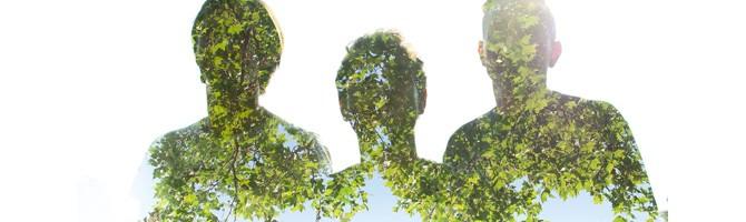 anTeny – Armia Drzew