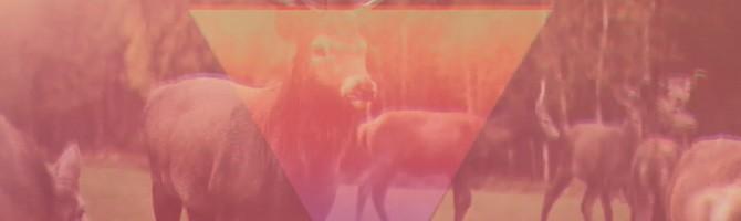 [Dla ucha i oka] Matta – Release The Freq